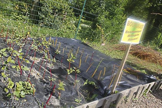 jardins solidaires 2014-5