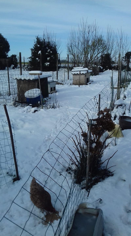 neige diapo lillers (11)