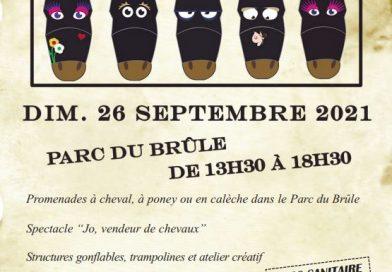 Lillers: dimanche 26 septembre, c'est la Fête du cheval